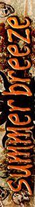 logo_summer_breeze_2008_rotated.jpg