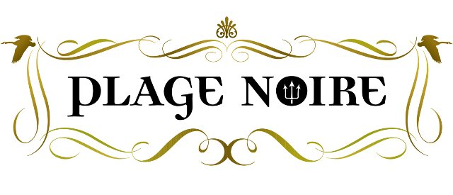 logo_plage-noir